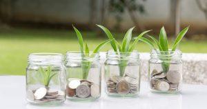 money management illustration pièces et plantes