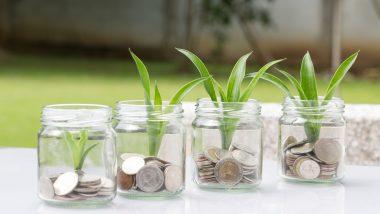 money management illustration pièces et plantes - money management trading
