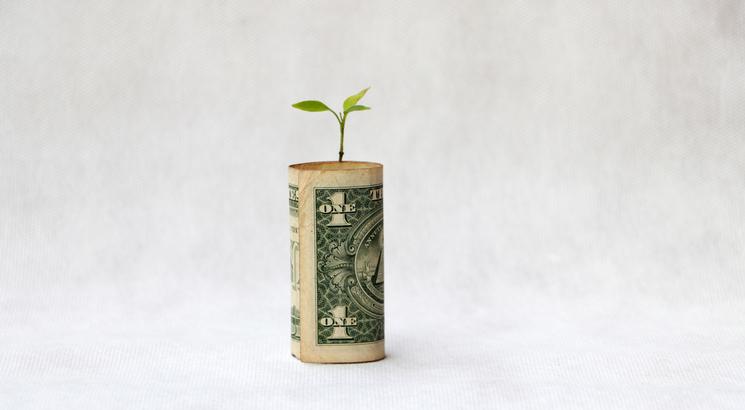 dividende comment ça marche - fonctionnement dividende - illustation billet plantes